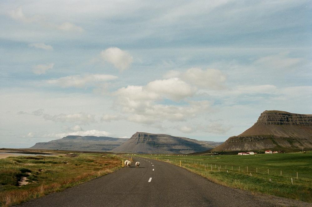 iceland-elopement-photographer-145.jpg