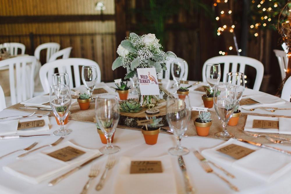 ostertag-vistas-maryland-wedding-photography-1041.jpg