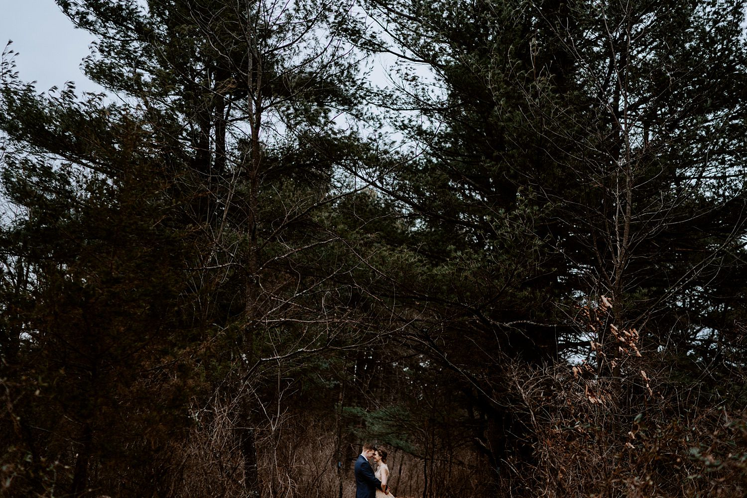 woodsey-elopement-_039.jpg
