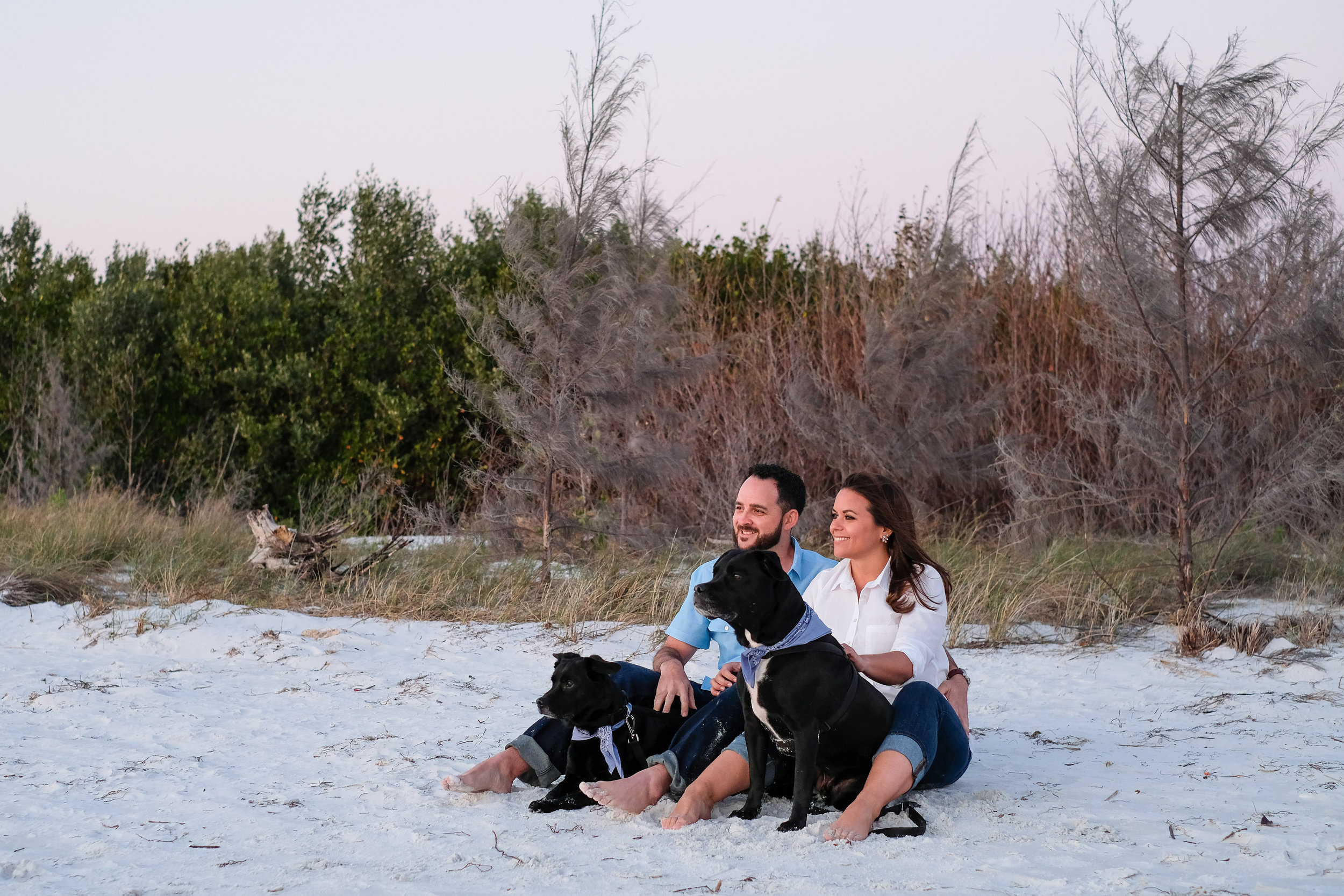 pet_in_engagement_photos
