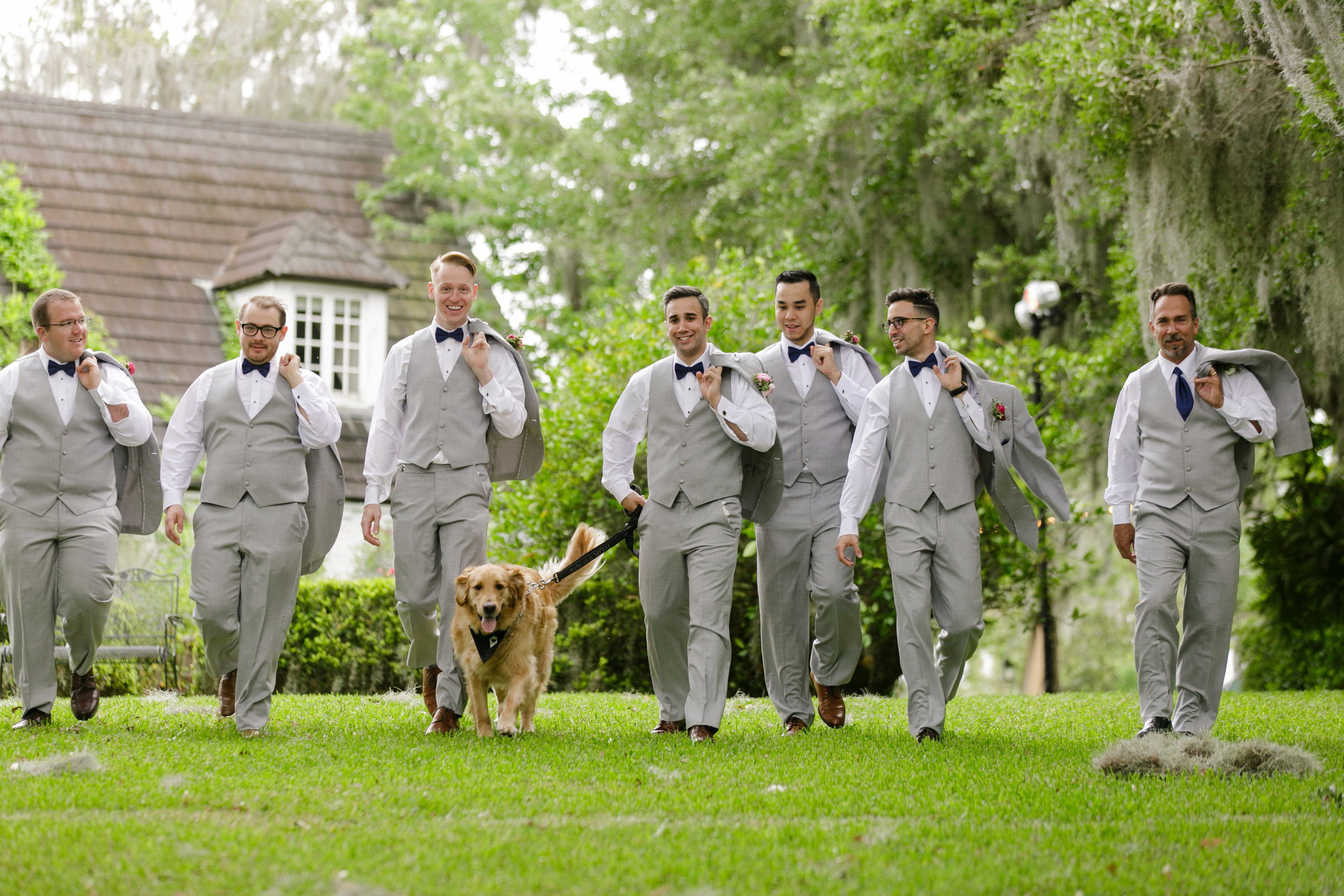 dog_in_wedding_orlando