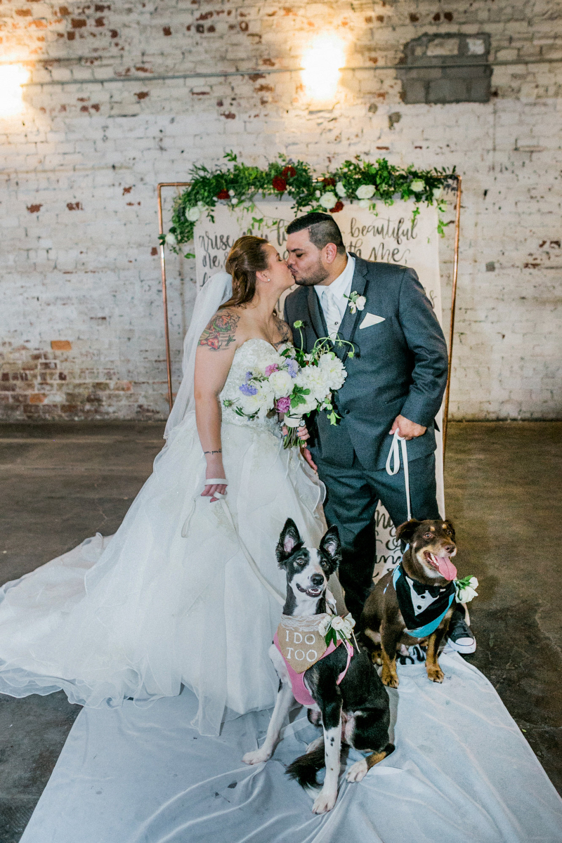 dog_in_wedding_tampa