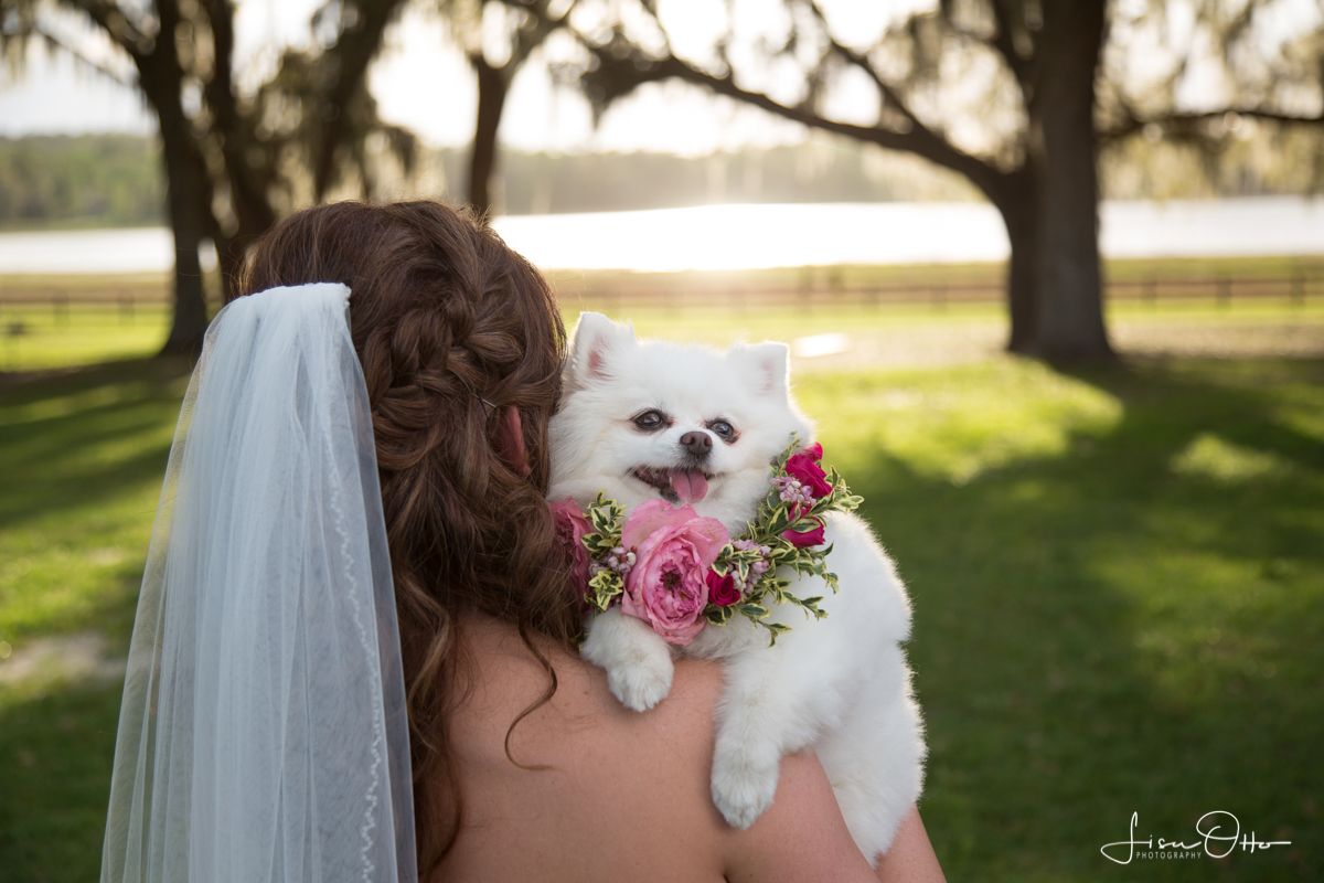 Fresh Flower Collar @ Wedding (Small Dog).jpg