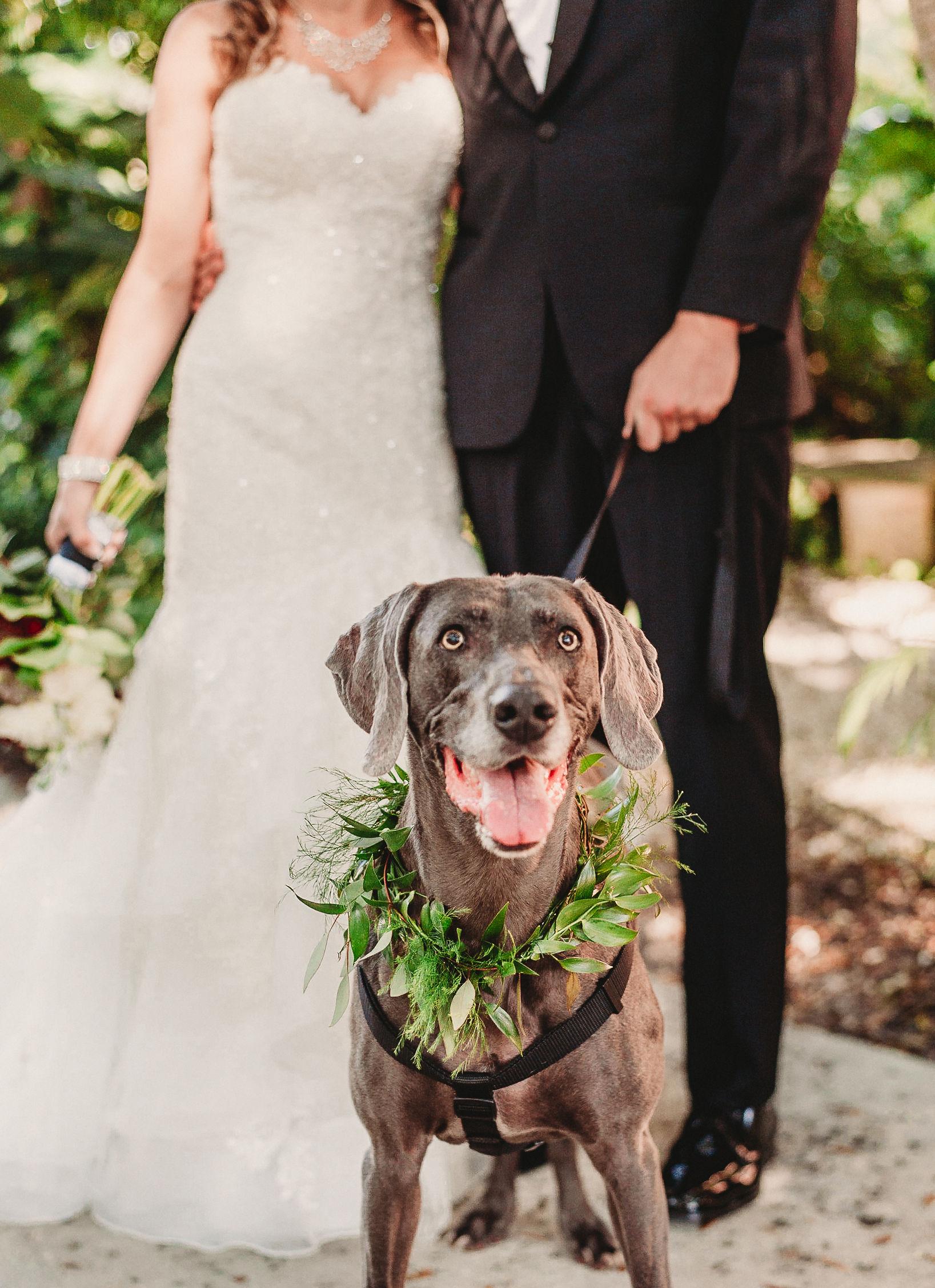 Dewitt-for-Love-Photography-M+K-Wedding-Vinoy-St-Petersburg-Tampa-Photographer-120.jpg