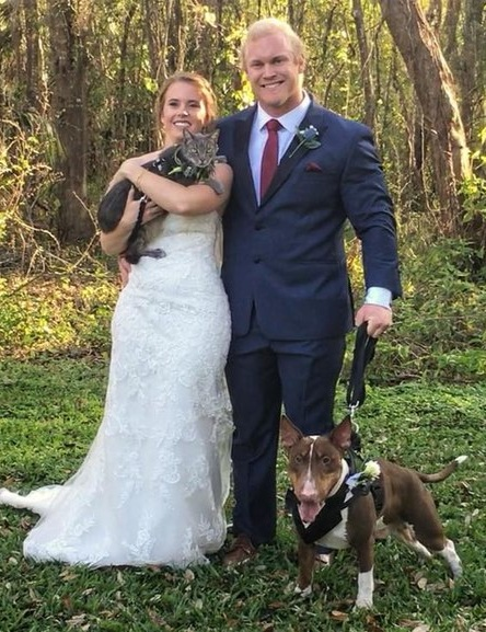 cat-and-dog-in-wedding