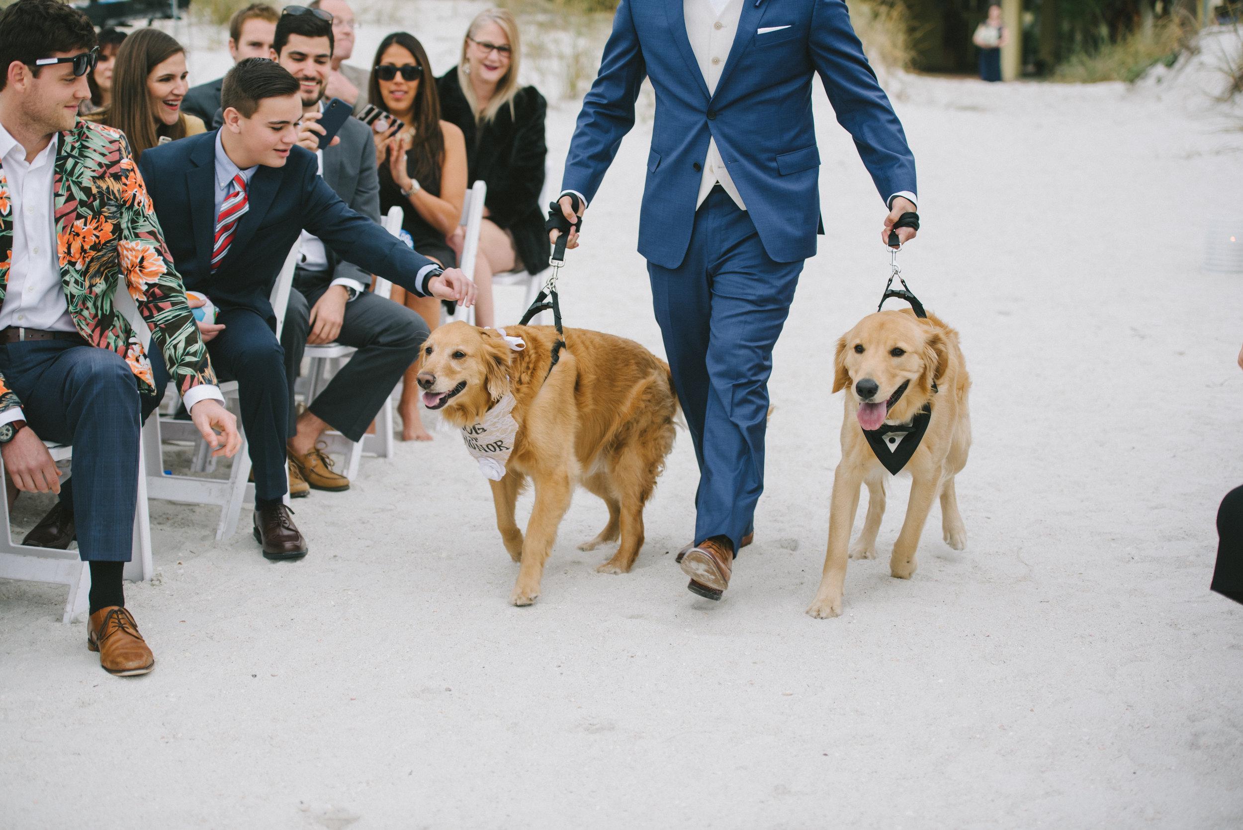 Photo by  Kéra Photography  at  Sirata Beach Resort  in St Pete Beach, FL