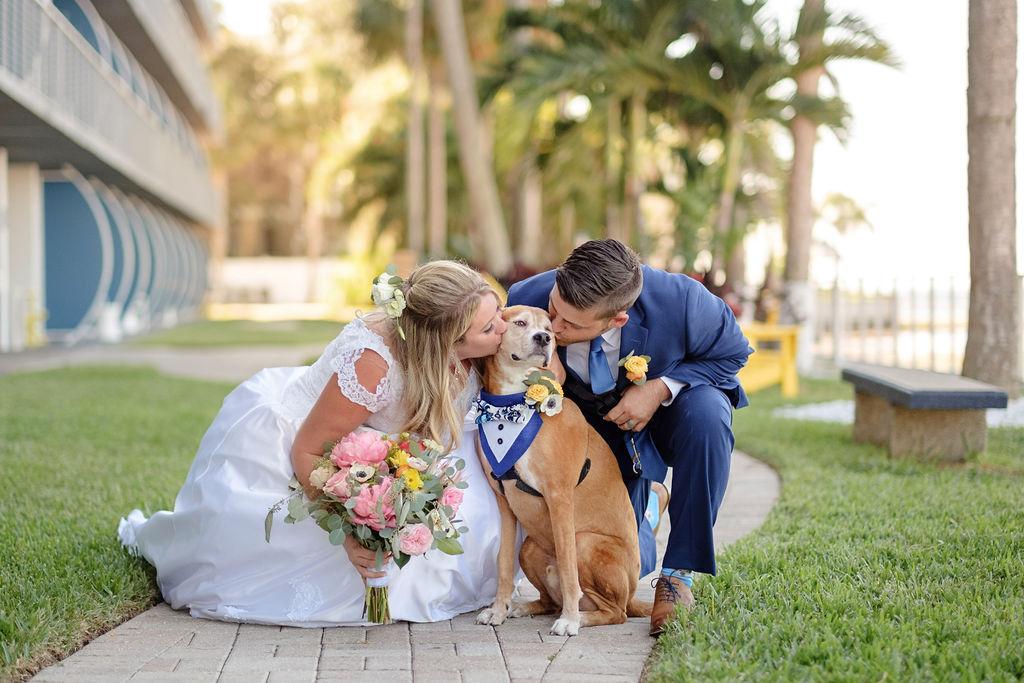 dog-getting-kisses