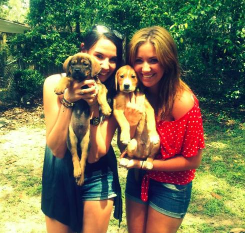 puppies-being-held