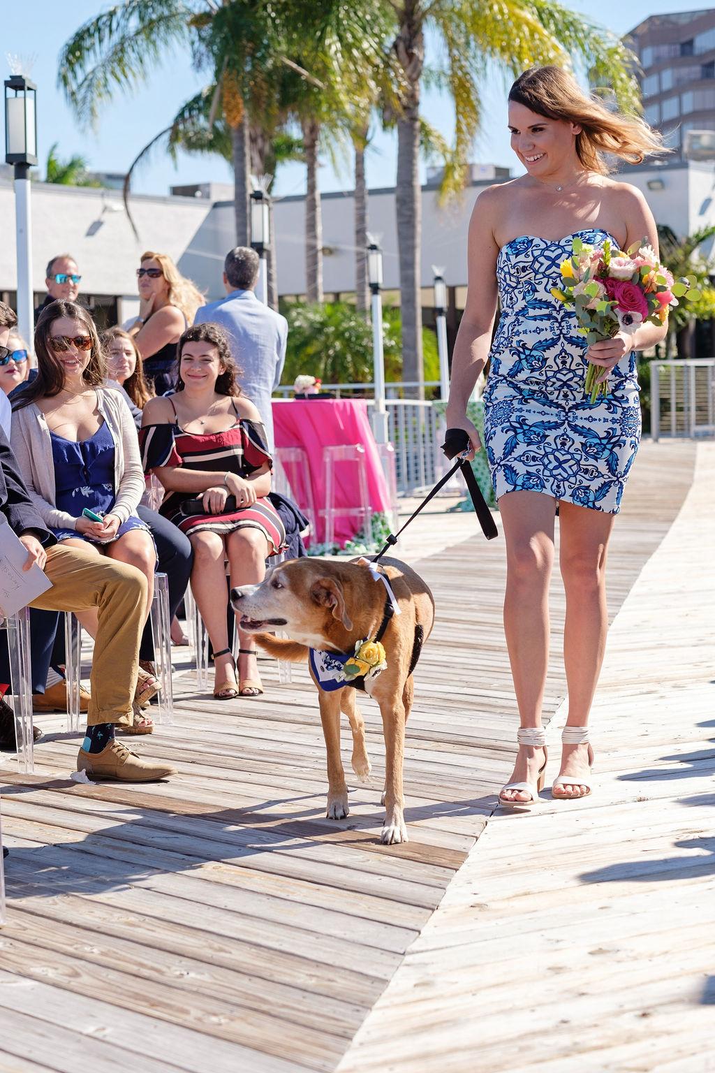 dog-walking-down-aisle