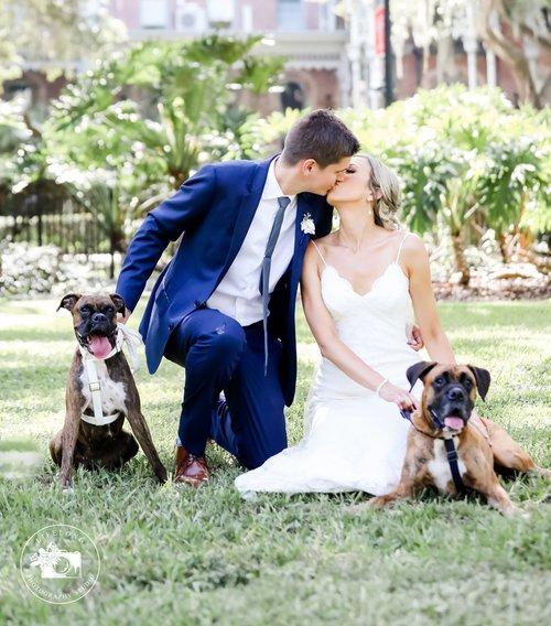 dogs-in-wedding.jpeg