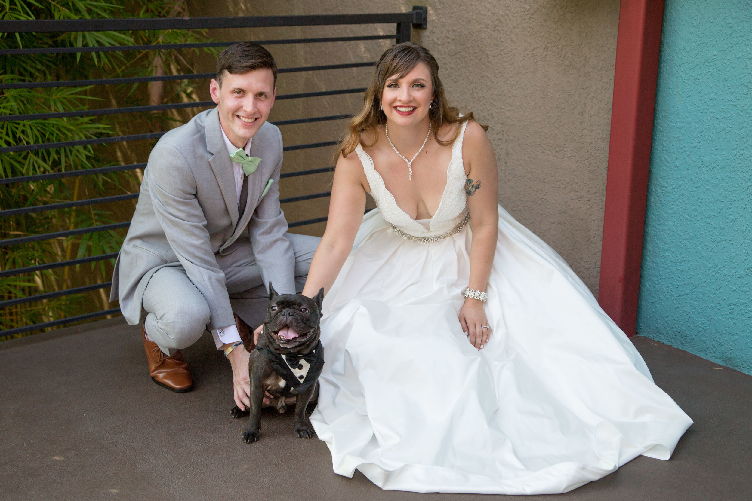 bride-groom-and-their-dog