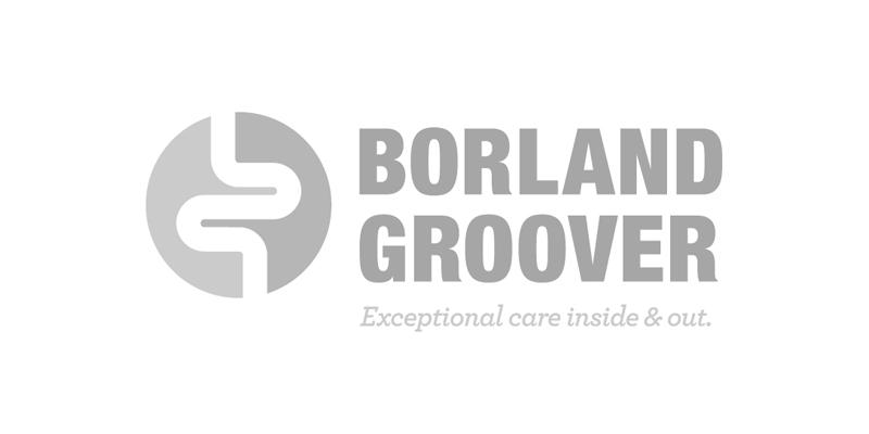 client_borlandGroover.jpg