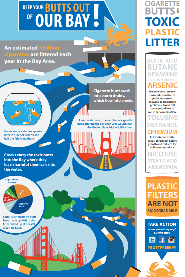 Save the Bay Infographic