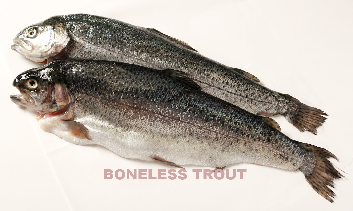 San_Francisco_Fish_Co,BonelessTrout,2ct,1lb (1 of 3).jpg
