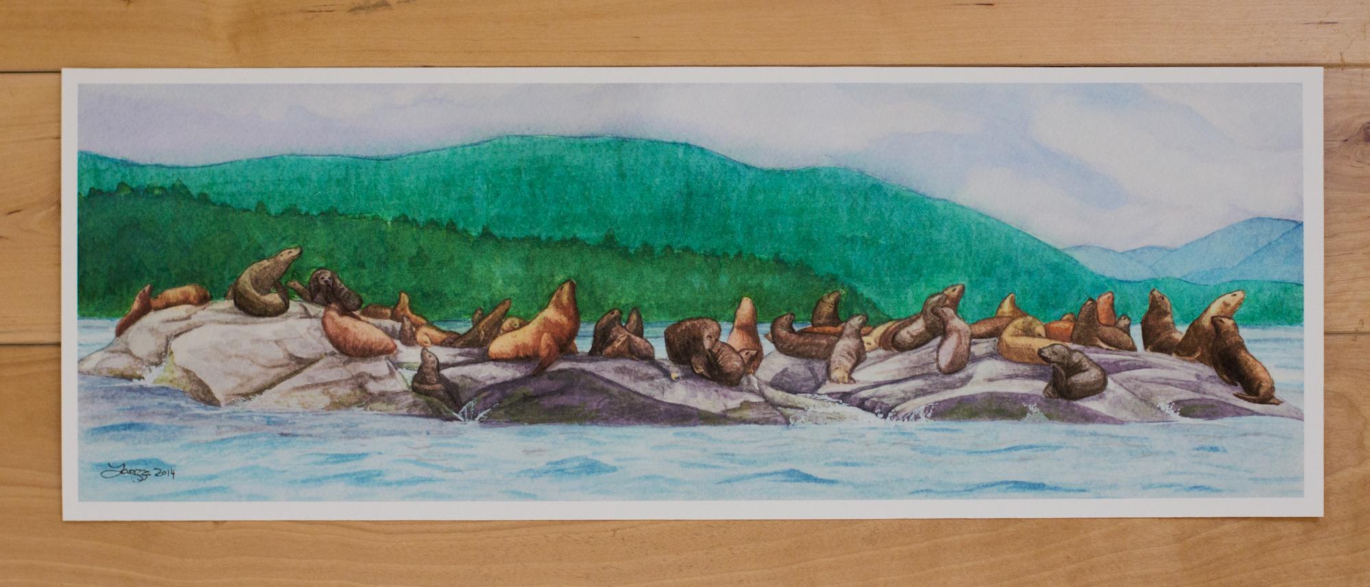 Lions Of Haida Gwaii