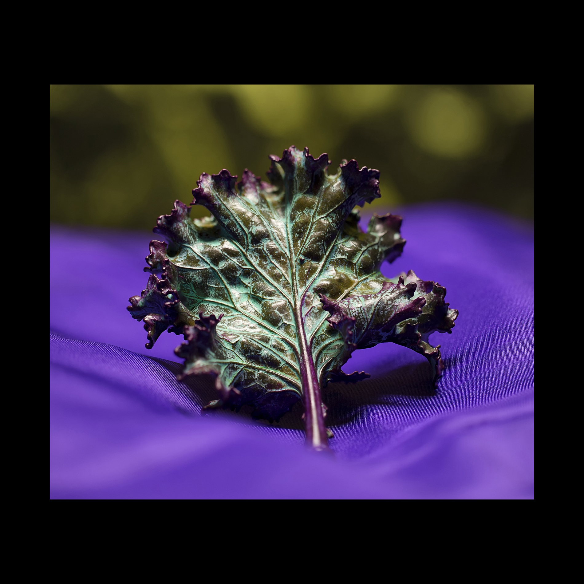 Natural Kale Leaf Pin