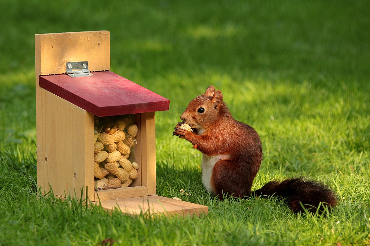 You squirreling away your money… -
