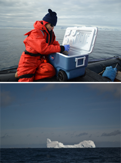 Iva collecting samples on the zodiac.