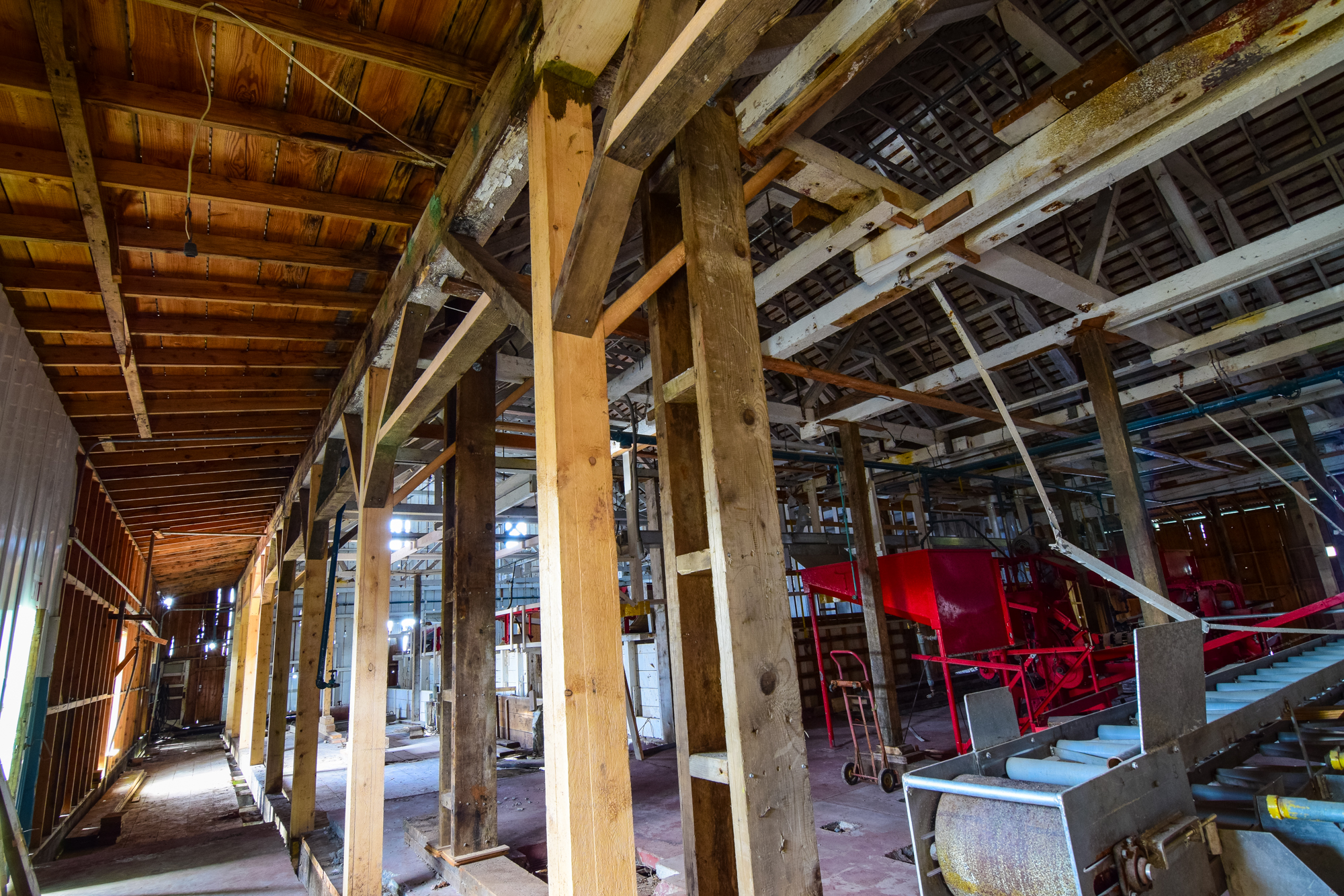 Diversified Diving uses beams that have been milled by Kevin Merry using locally harvested timber to replace rotten ones. The project explores every opportunity to stimulate the local economy.