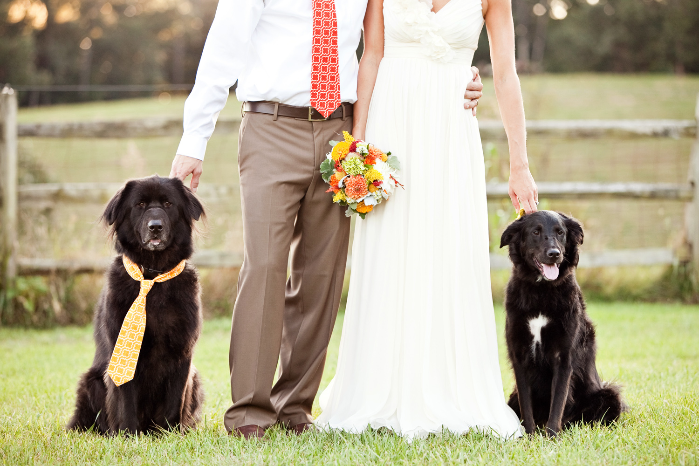Weddings-SS-portfolio-I-0040.jpg