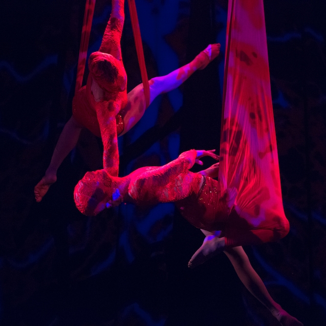 the-ketamine-musical-was-like-cirque-du-soleil-on-drugs-body-image-1471901221.jpg