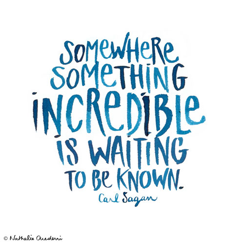Somewhere Something Incredible is waiting to be known.
