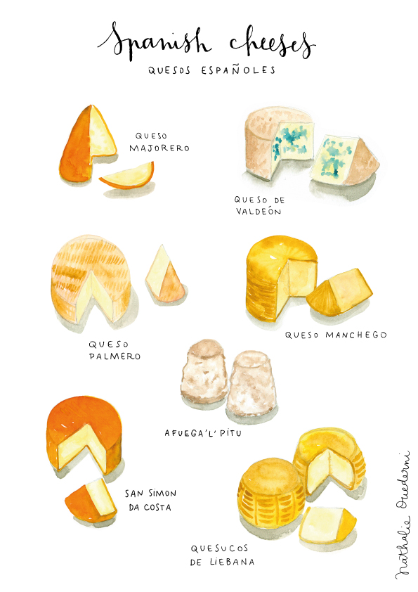 spanish-cheeses-watercolor-food-illustration-flat.jpg