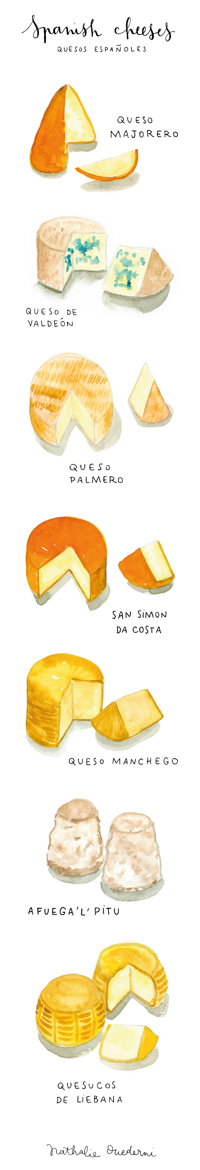 spanish-cheeses-watercolor-food-illustration-long.jpg