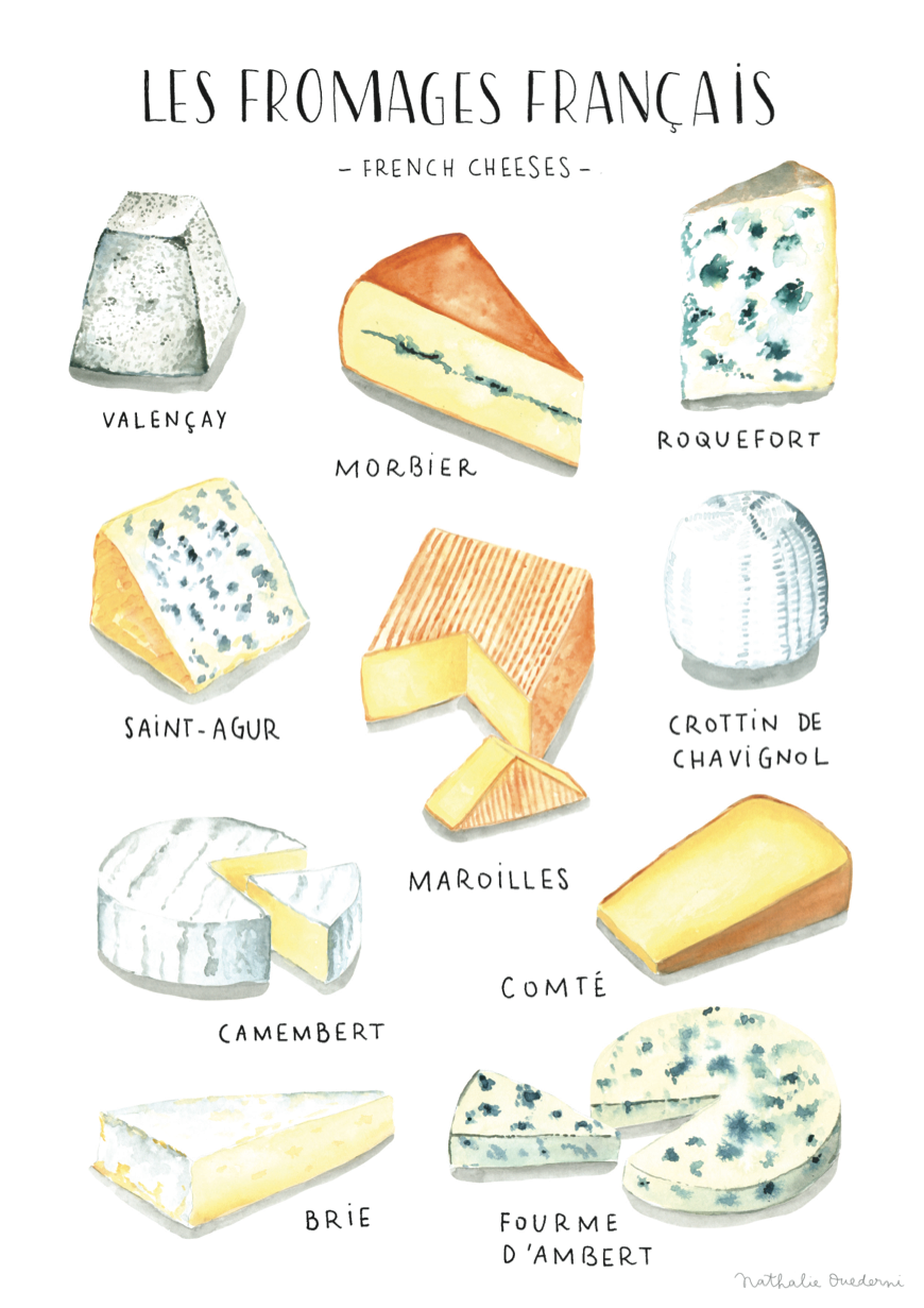 poster-watercolor-french-cheese-food-illustration-nathalie-ouederni.png