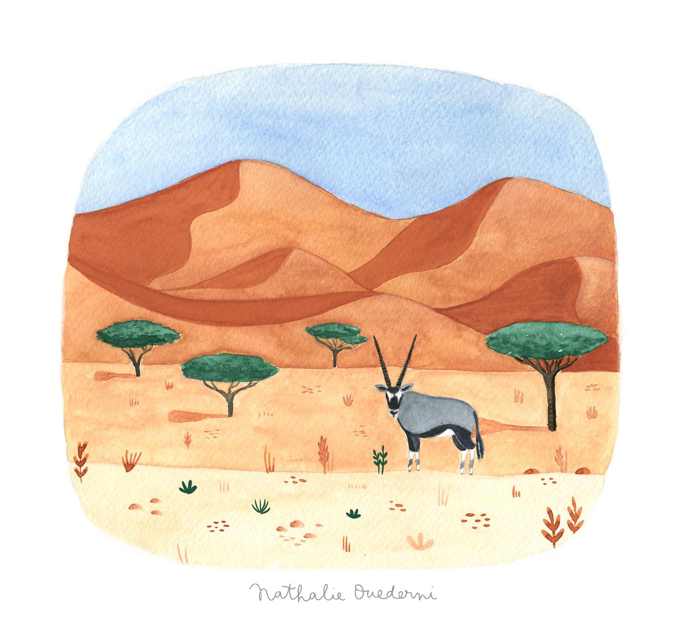 Namibia illustration