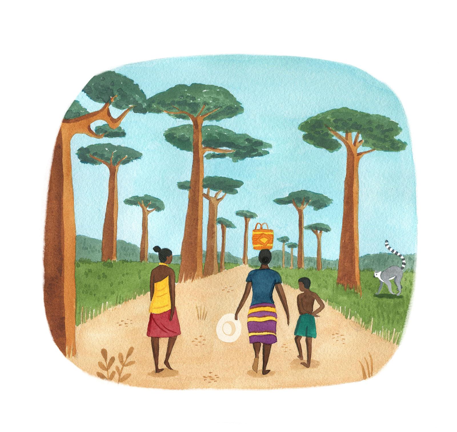 Madagascar-def02.jpg
