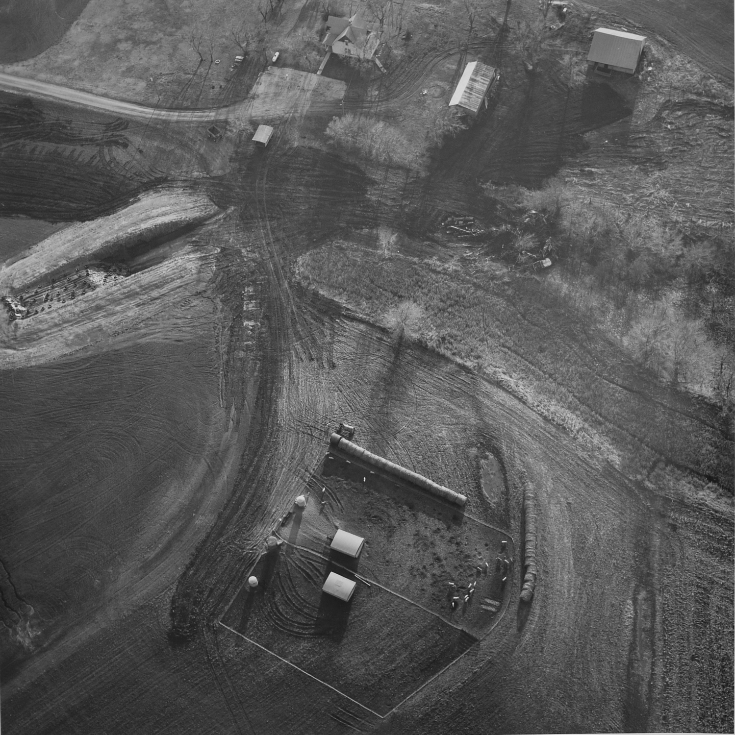 Farm with hogs and tires, 1992.jpg