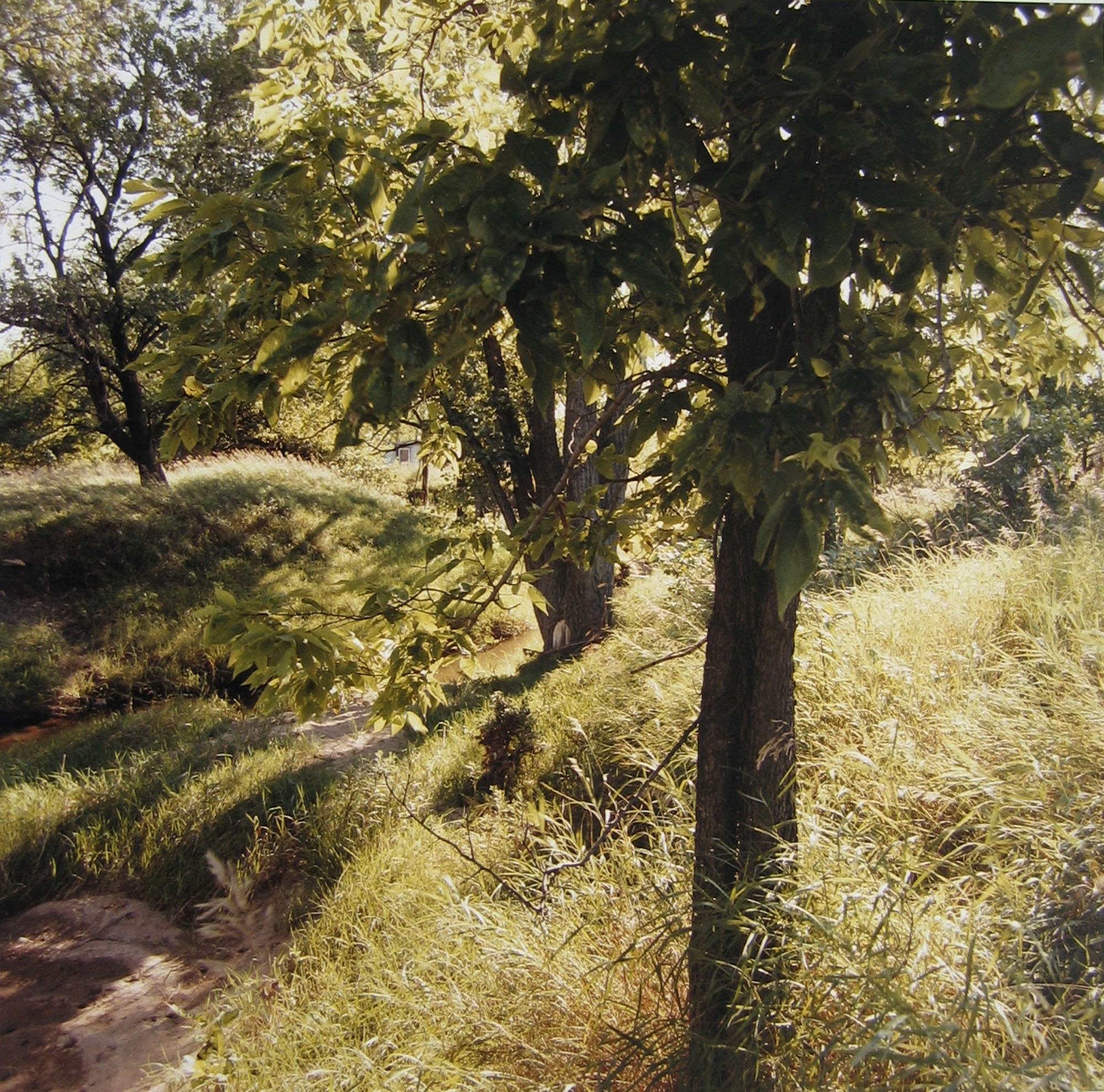 By Prairie Creek, Sunday, July 28, 1996