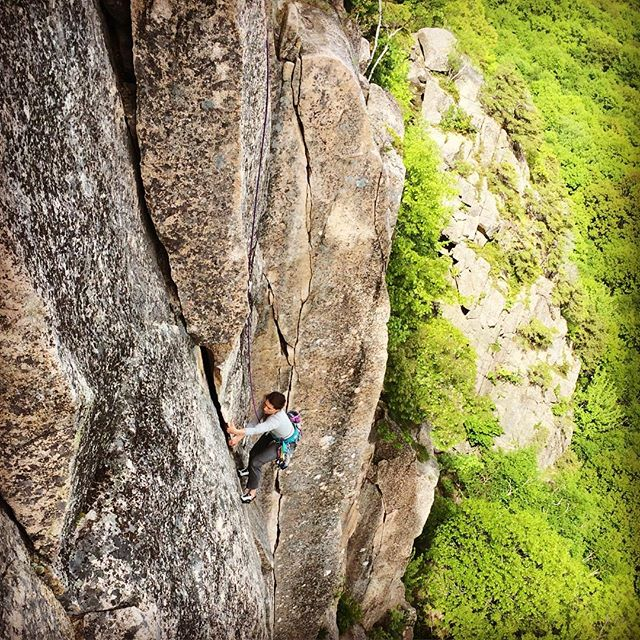 With its recently revived first pitch, and the loss of the large, loose block on the second, Birch Aid has a brand new feel to it. Don't fret though, because it is as good as ever! Big thanks to Eli Simon and Ryan Scott for all the scrubbing they have done this spring! #rockclimbsofacadia