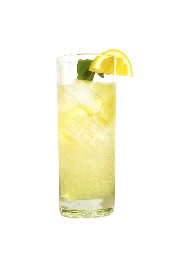 prod_recipes_NM_lemon_sage_collins.jpg