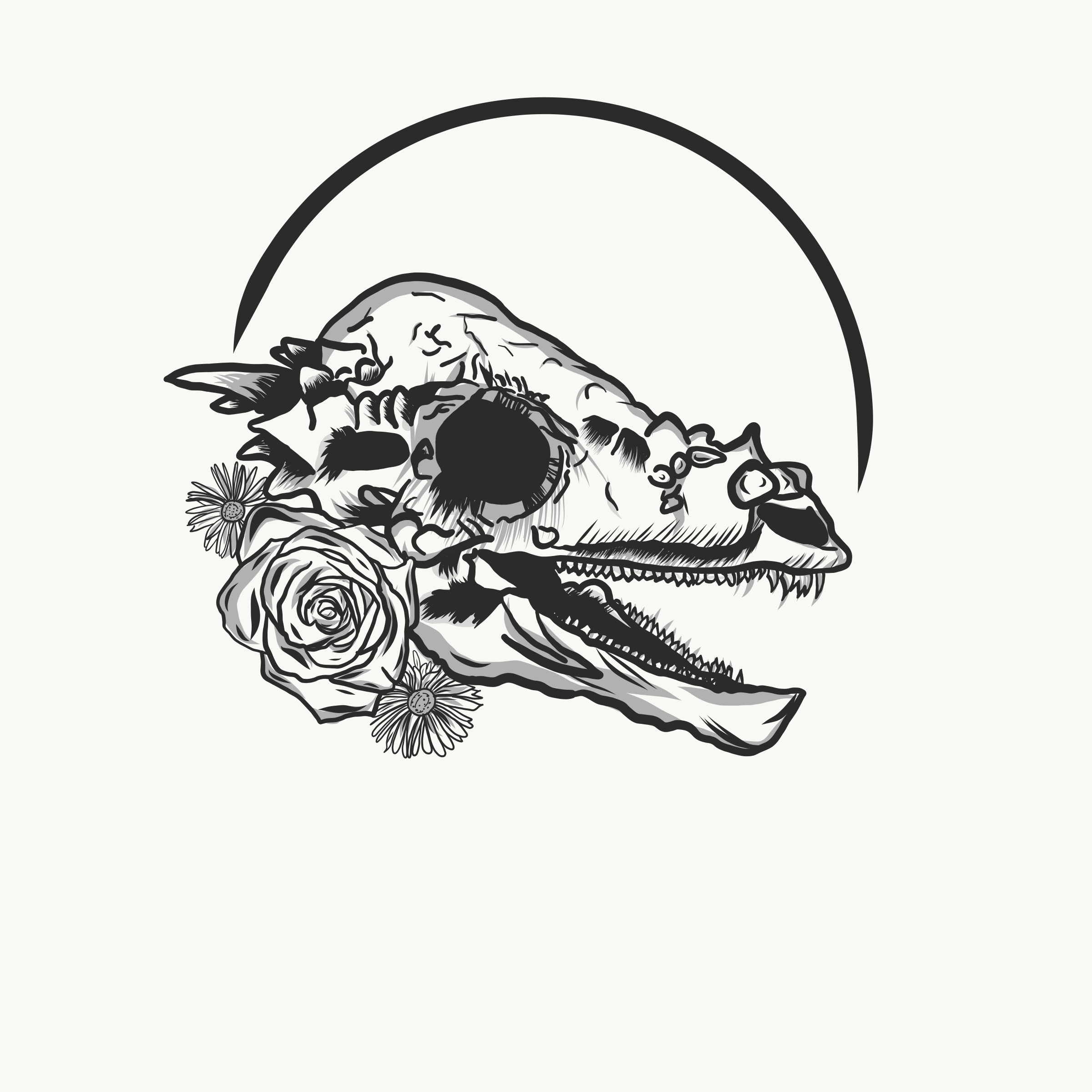 Pachycephalosaurs skull designed for silk screen printing.