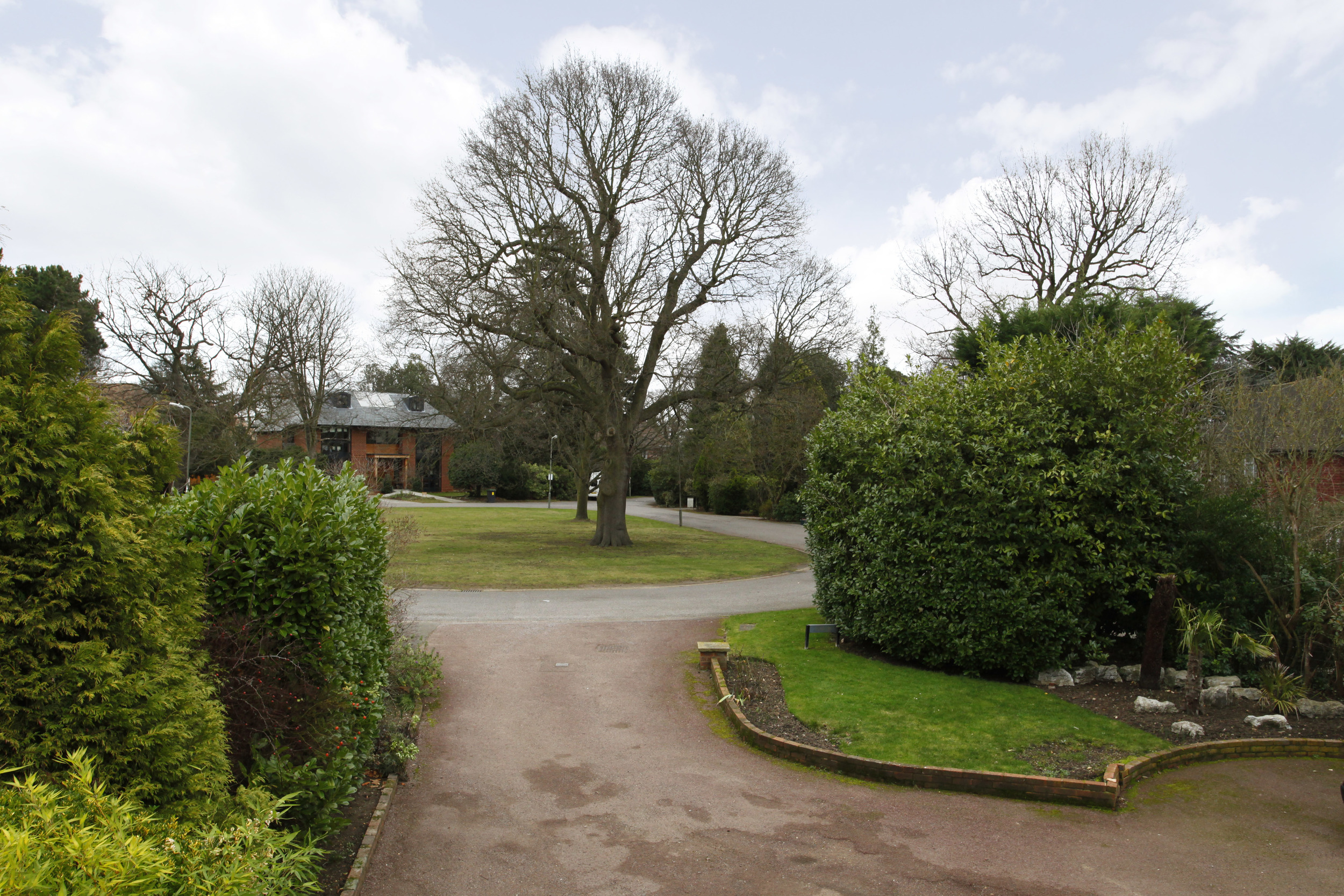 Athena Coombe End - View.jpg