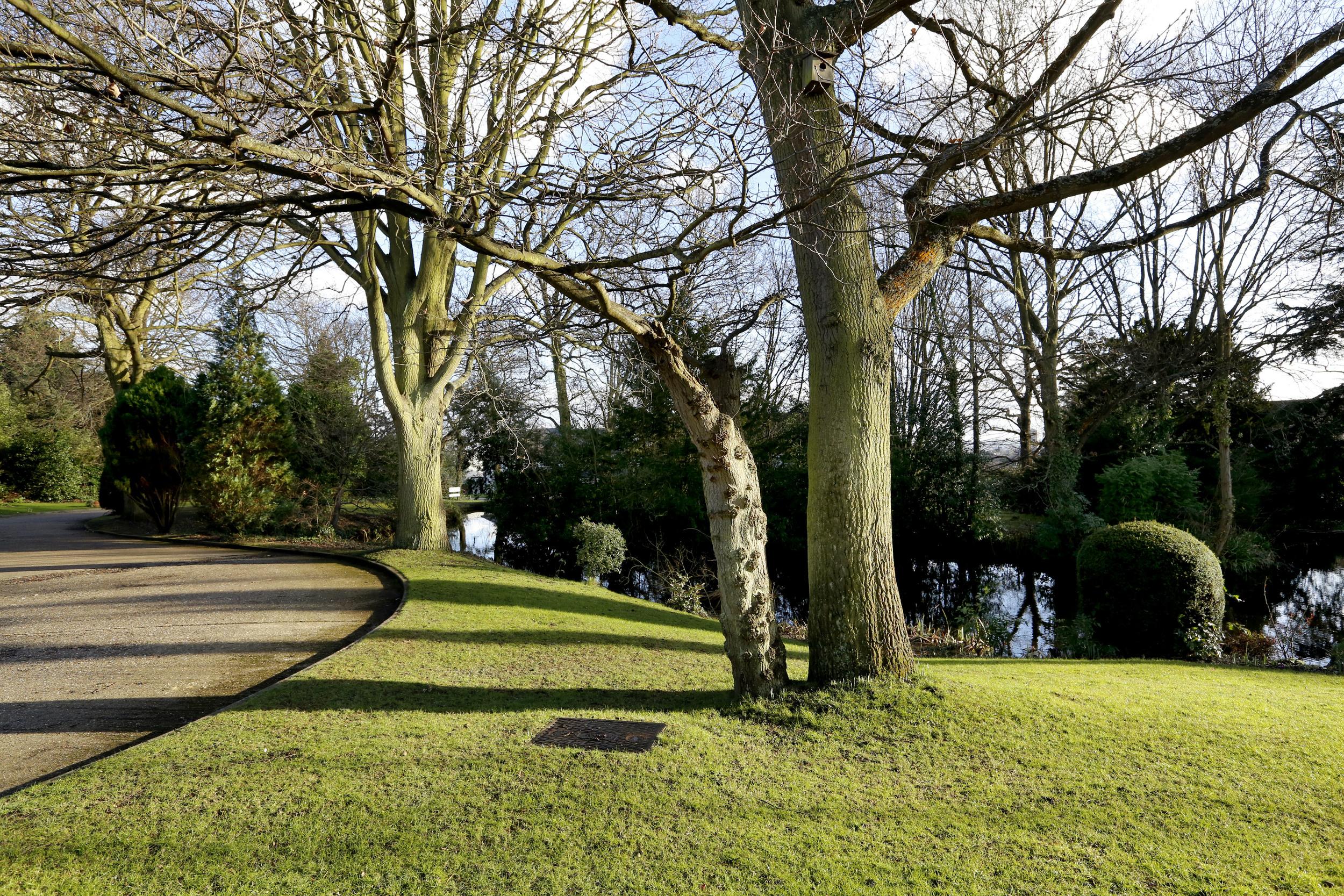 Coombe House Chase 4 - Comm Gdns2.jpg
