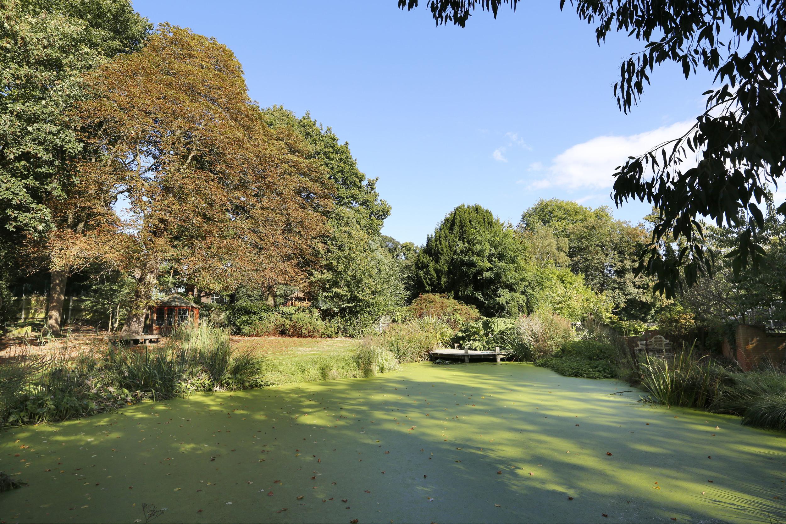 Cardinal House - Green Pond.jpg