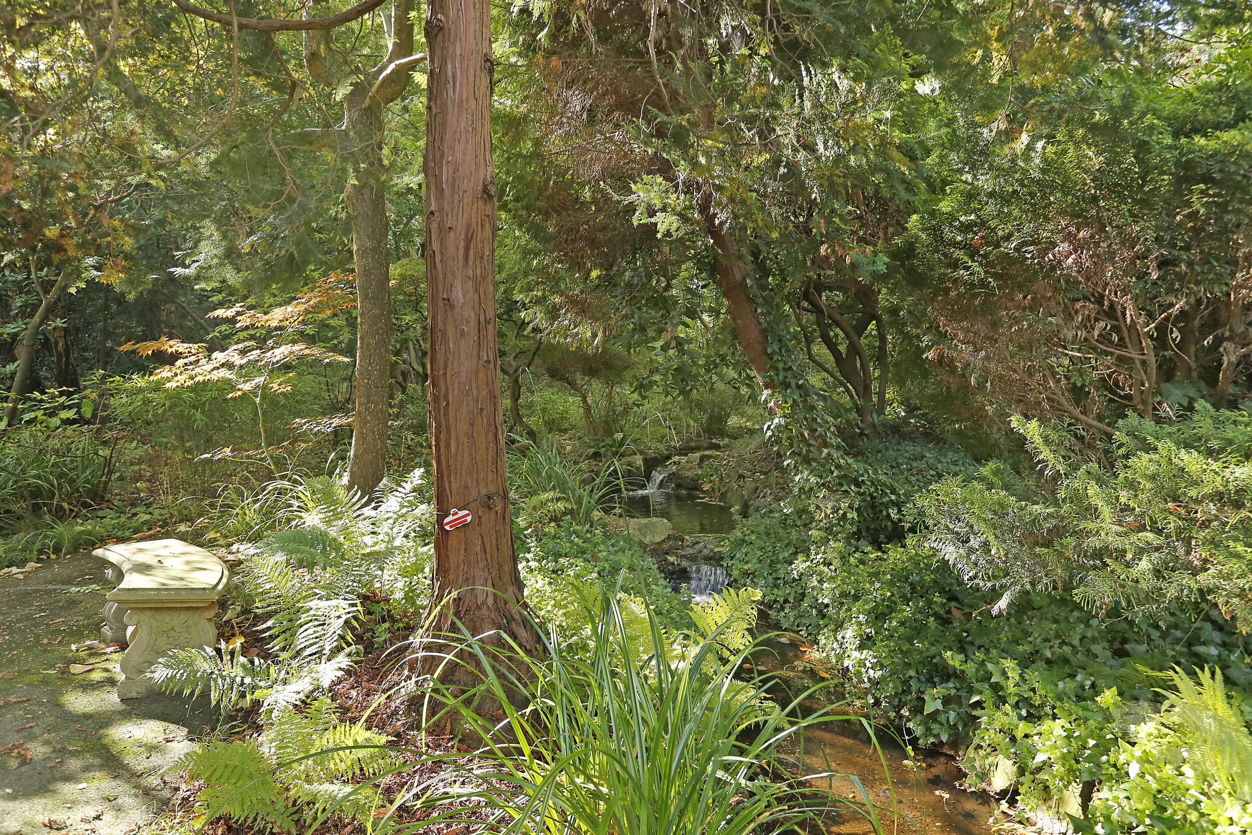 Watergardens 32 - Gdn Detail.jpg