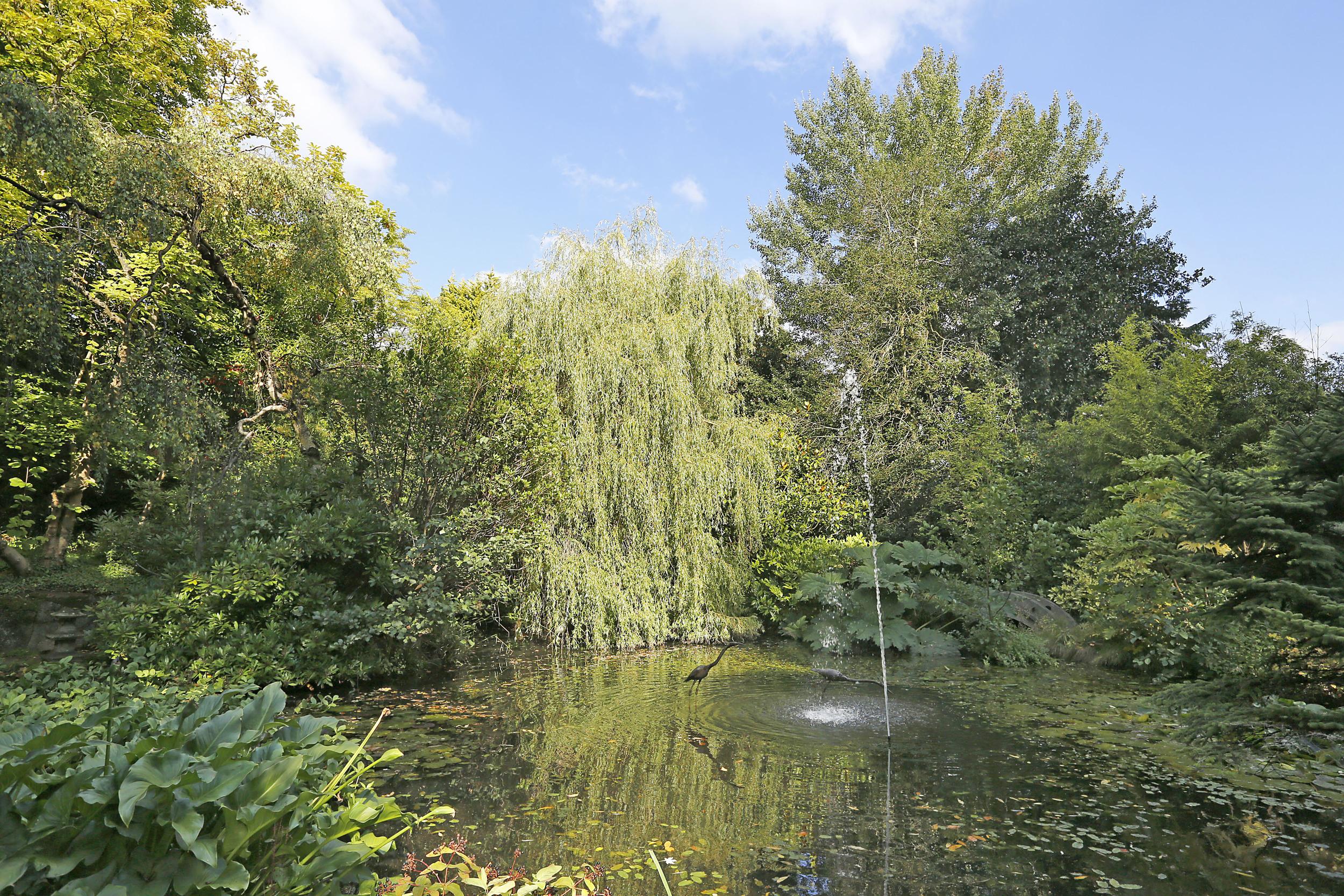 Watergardens 32 - Lake.jpg