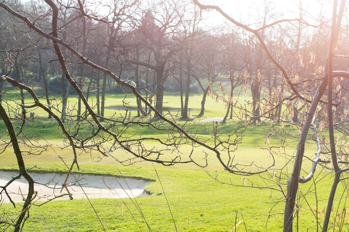 golf course from garden 1.jpg