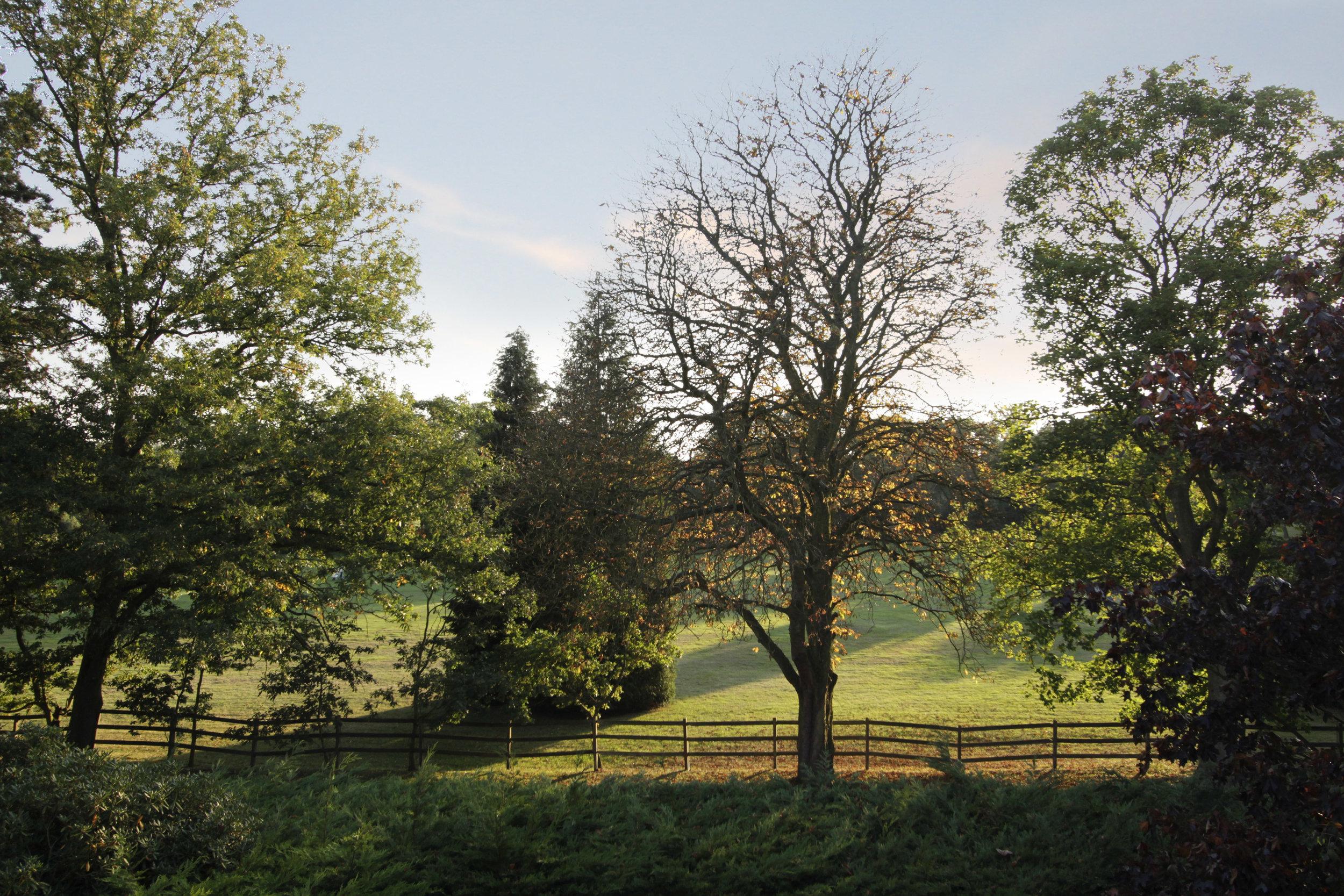 Watergardens 11 - Golf View.jpg