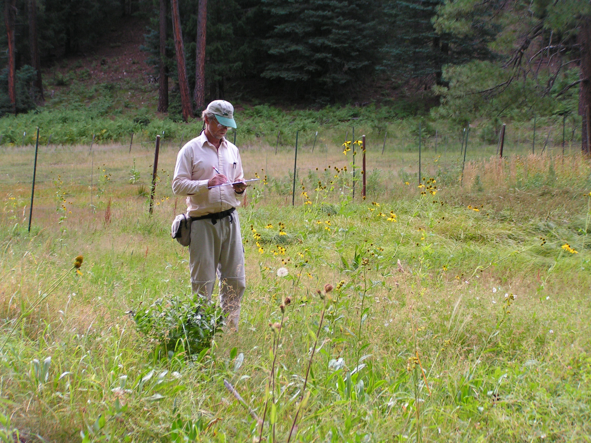 Fig. 2: Dr. Larry Stevens collecting inventory data, Merritt Spring, Coconino National Forest, Arizona