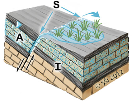 Sketch of Helocrene spring type. A=aquifer; I=impermeable stratum; S=spring source. The inverted triangle represents the water table or piezometric surface. Fault lines are shown where appropriate.