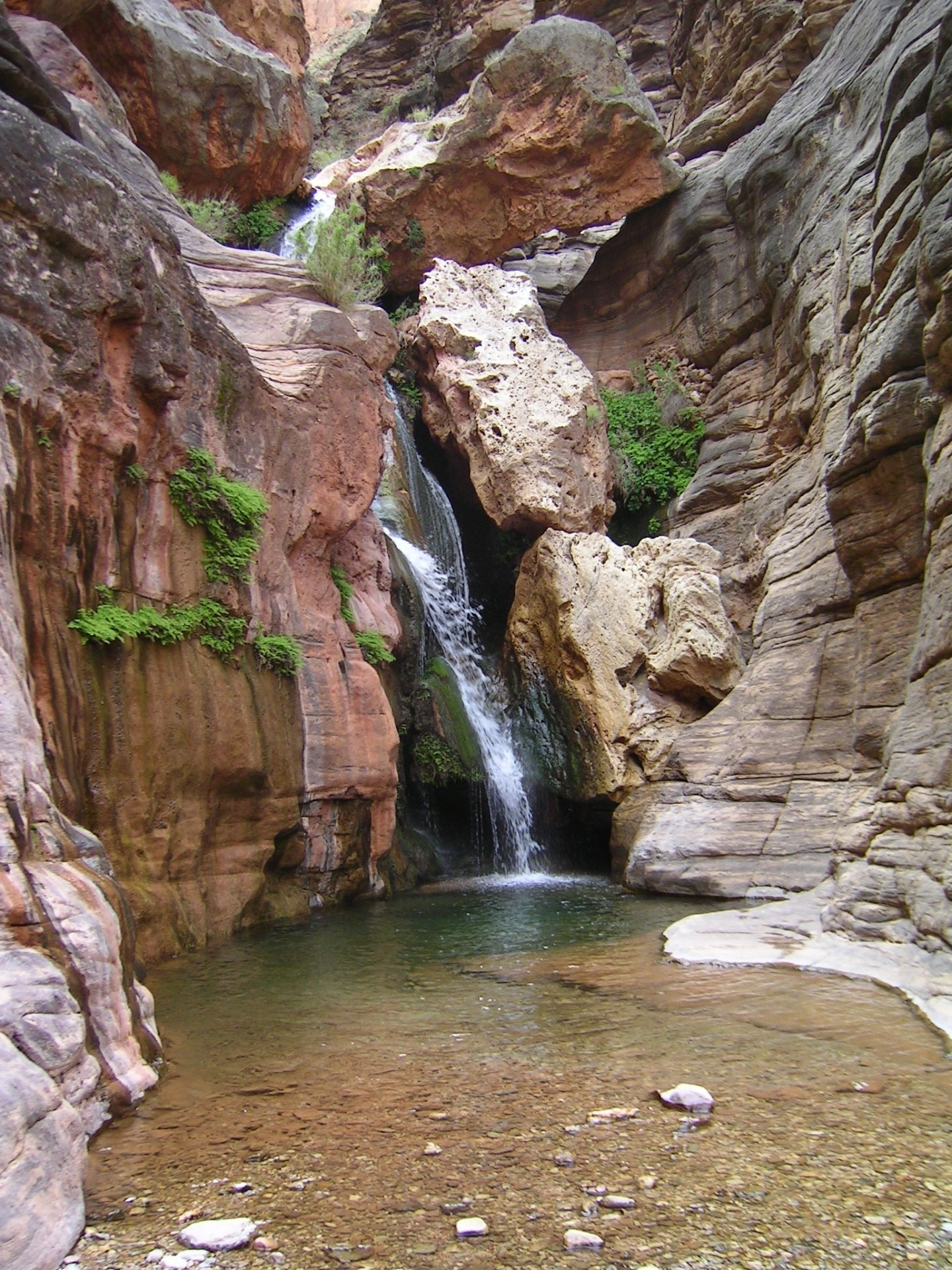 Elves Chasm spring-fed waterfalls. We often stop here on river trips. Photo by Bob Martin