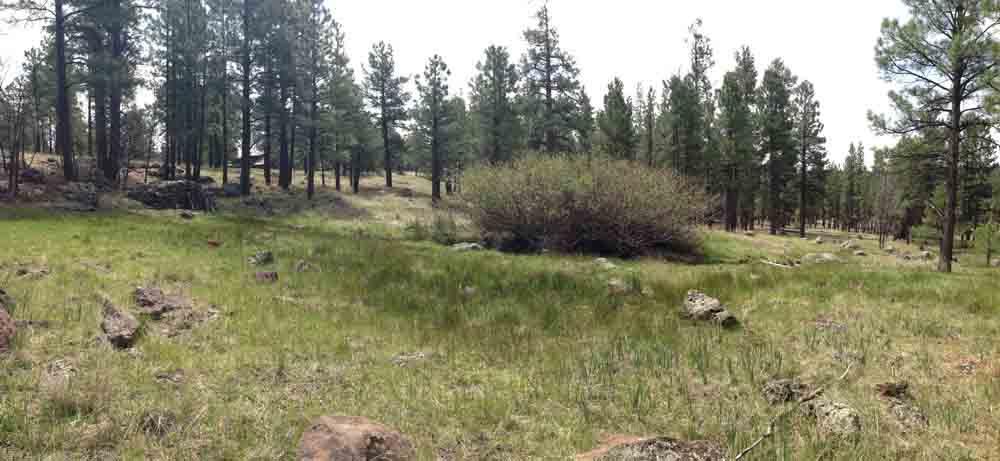 Panoramic view of Coyote Springs