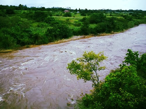 River Yala near Kaimosi, Kenya
