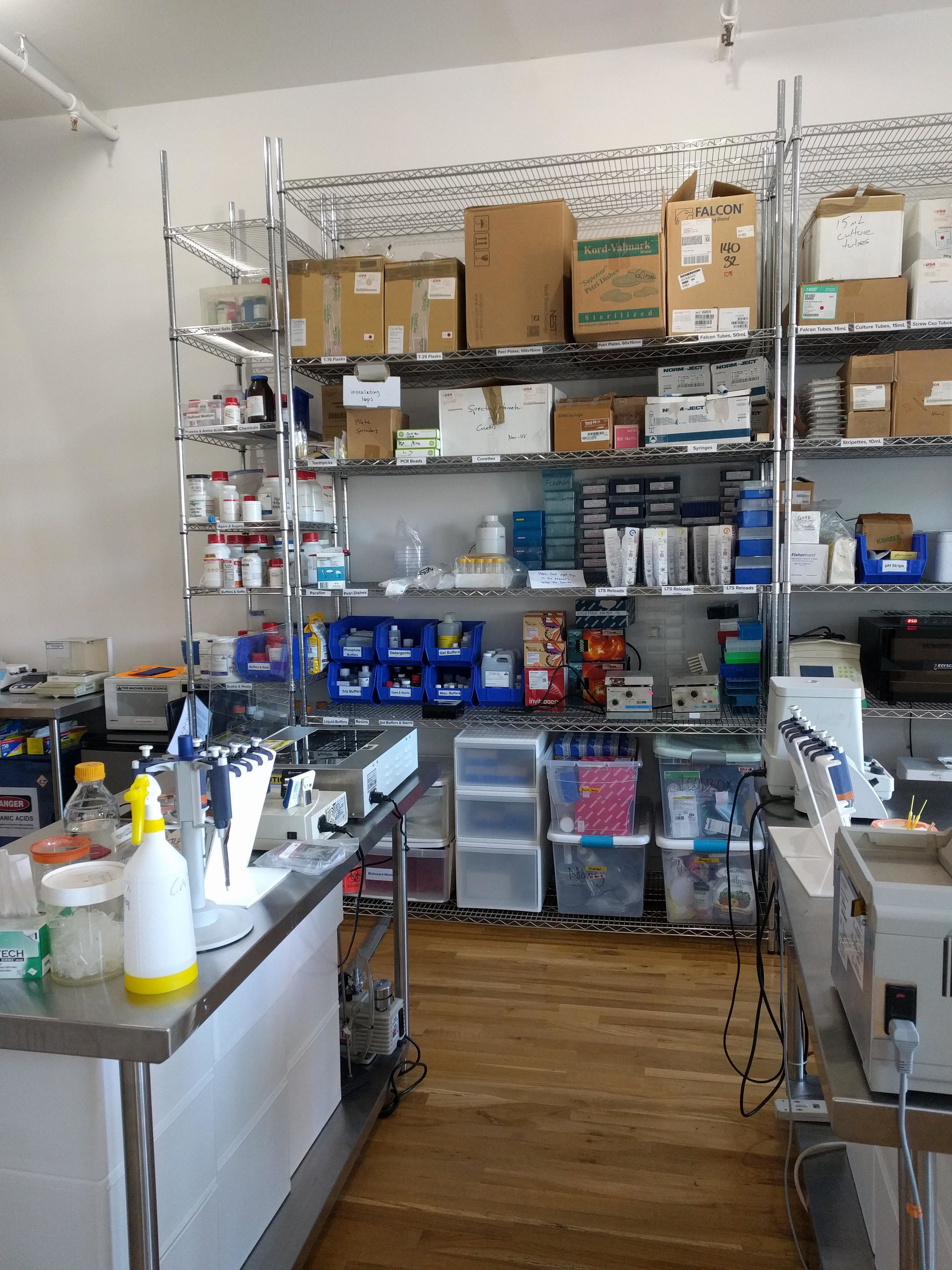 lab5.jpg