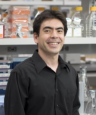 Ken Cadwell PhD  Associate Professor; Skirball Institute of Biomolecular Medicine, Molecular Pathogenesis. Department of Microbiology